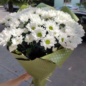 Букет білих ромашкових хризантем у Тернополі фото