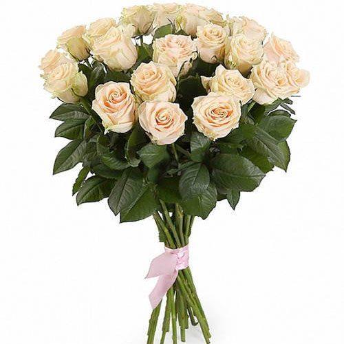 букет 21 кремова троянда картинка