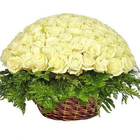 Кошик 101 біла троянда фото