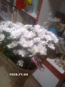 квіти з доставкою Рівне