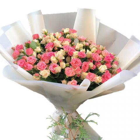 33 кущові троянди