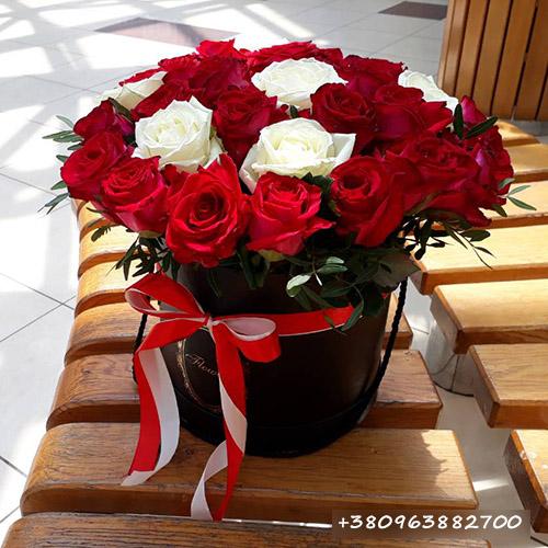 троянди в Тернополі фото