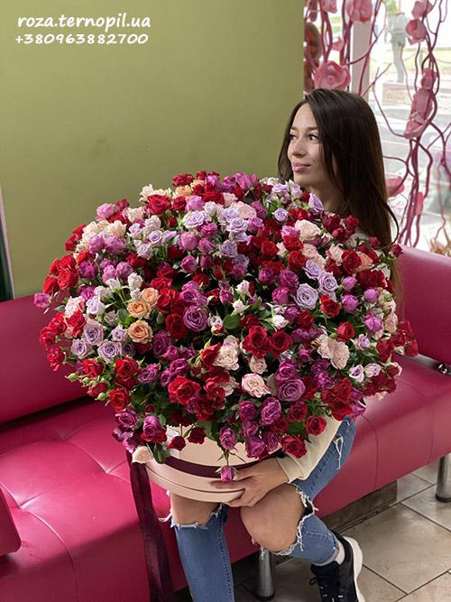 фото кущова троянда в капелюшній коробці