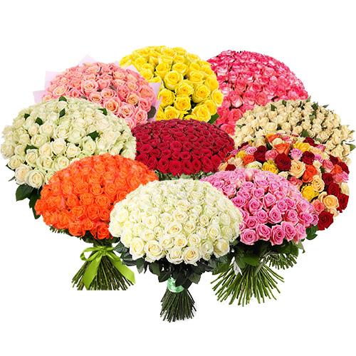 1001 троянда різних сортів фото товару