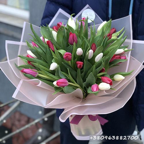 25 біло-рожевих тюльпанів фото букета